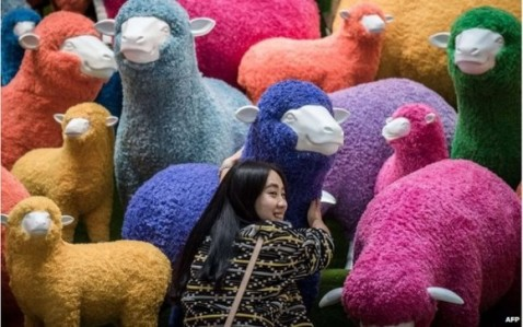 sheep-display-hong-kong-2015-AFP-e1424255103394
